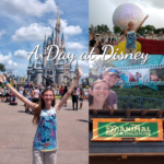 A Day at Walt Disney World – Part 1